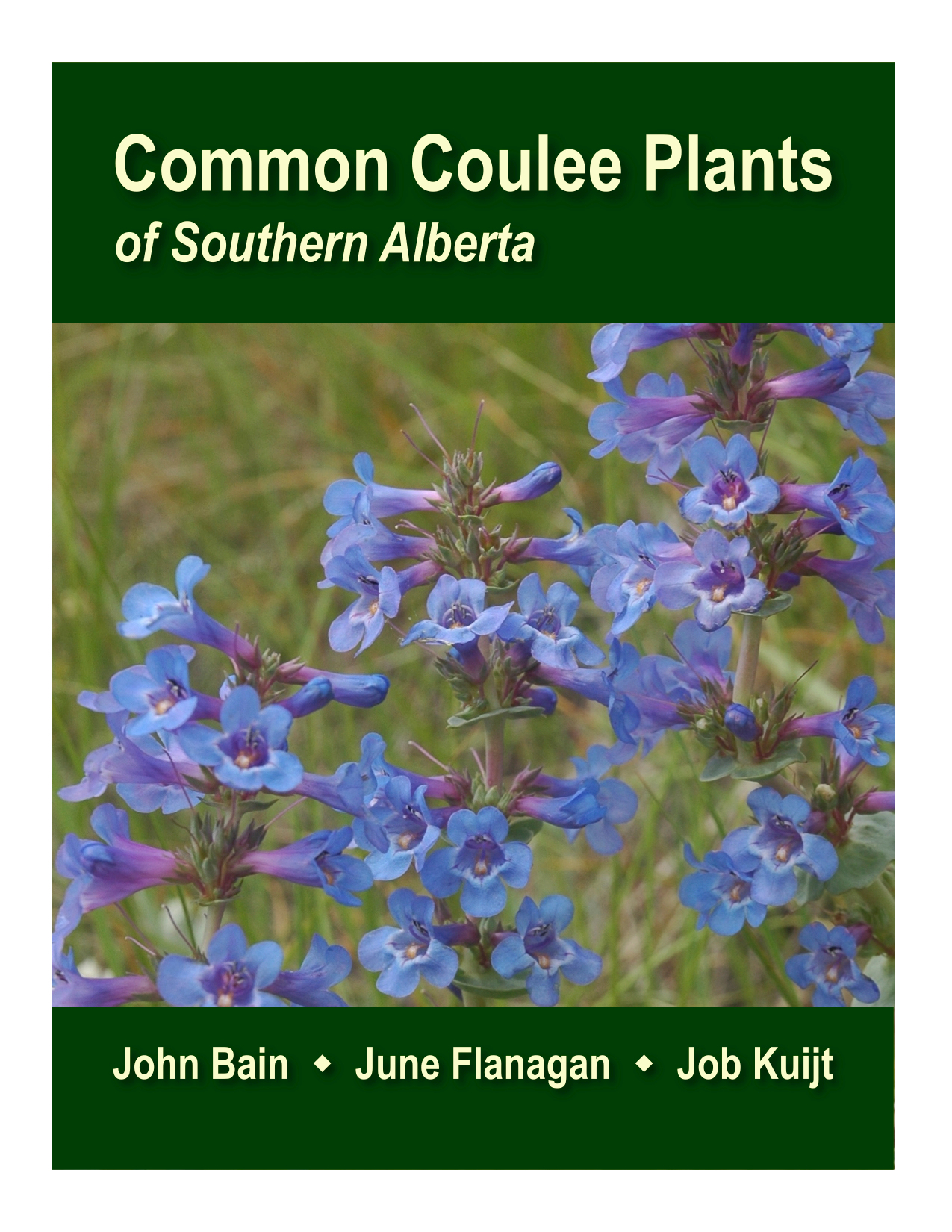 Common Coulee Plants of Southern Alberta book cover