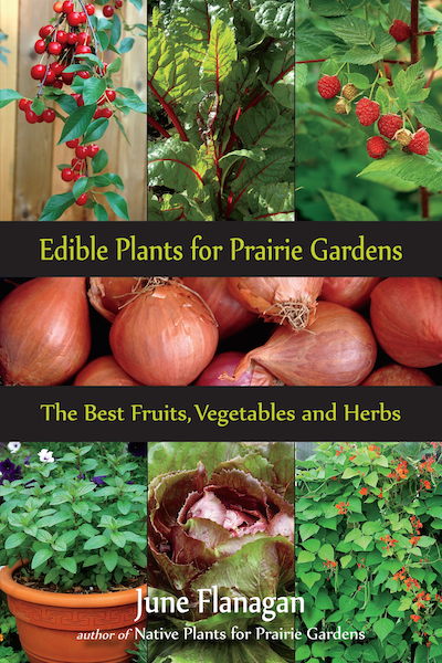 Edible Plants book cover copy